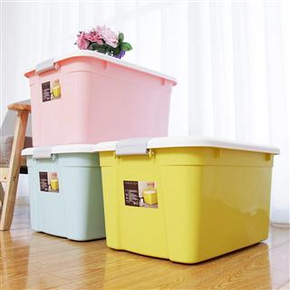 禧天龙52L大号蝶彩混色收纳箱环保塑料整理箱3支装 6131