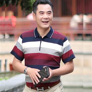 男装短袖宽松型条纹薄款爸爸装日常休闲翻领t恤